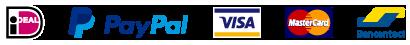 Payment logos Damiware